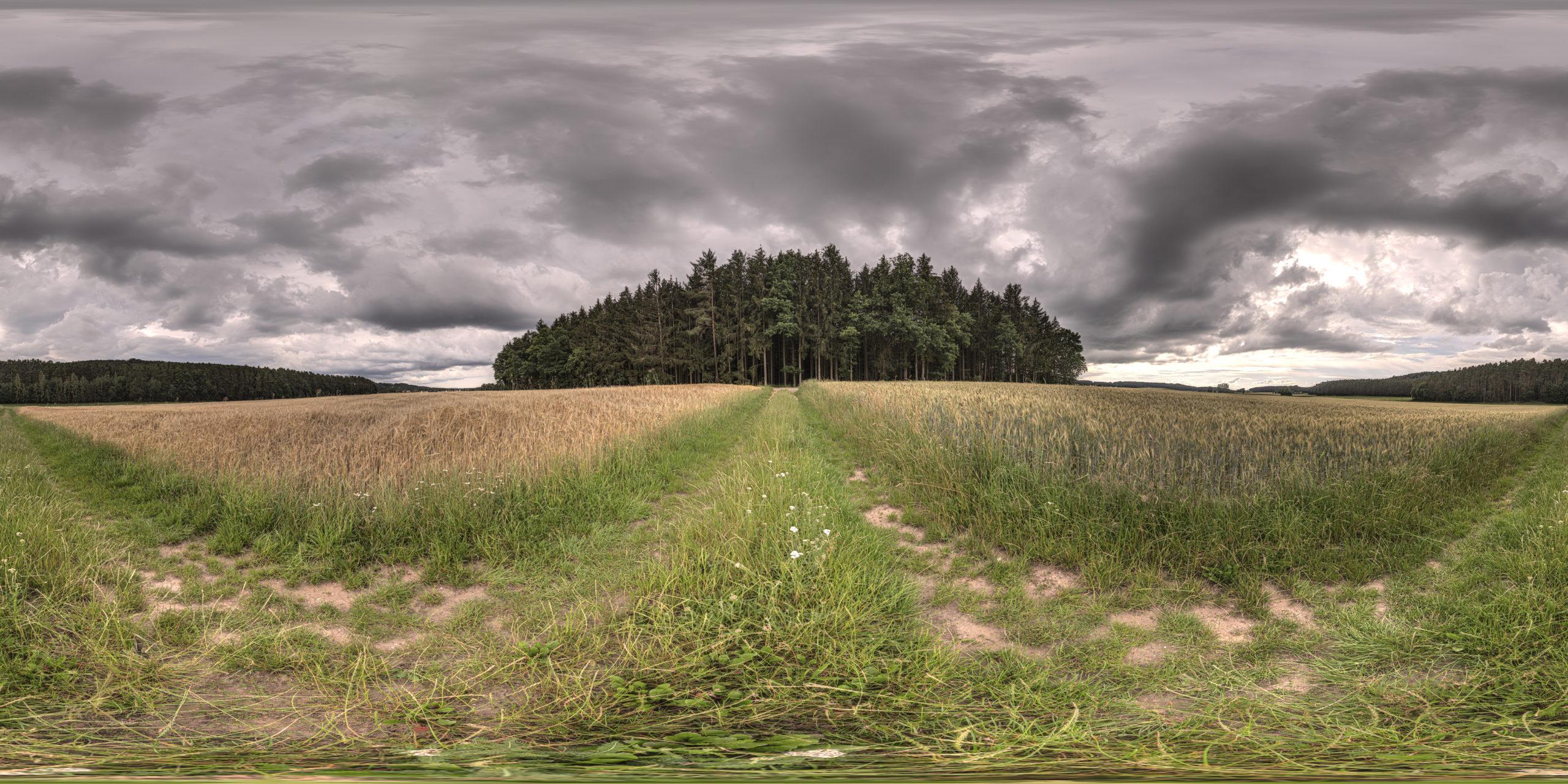 HDRI-Skies-Field-Gunzenhausen
