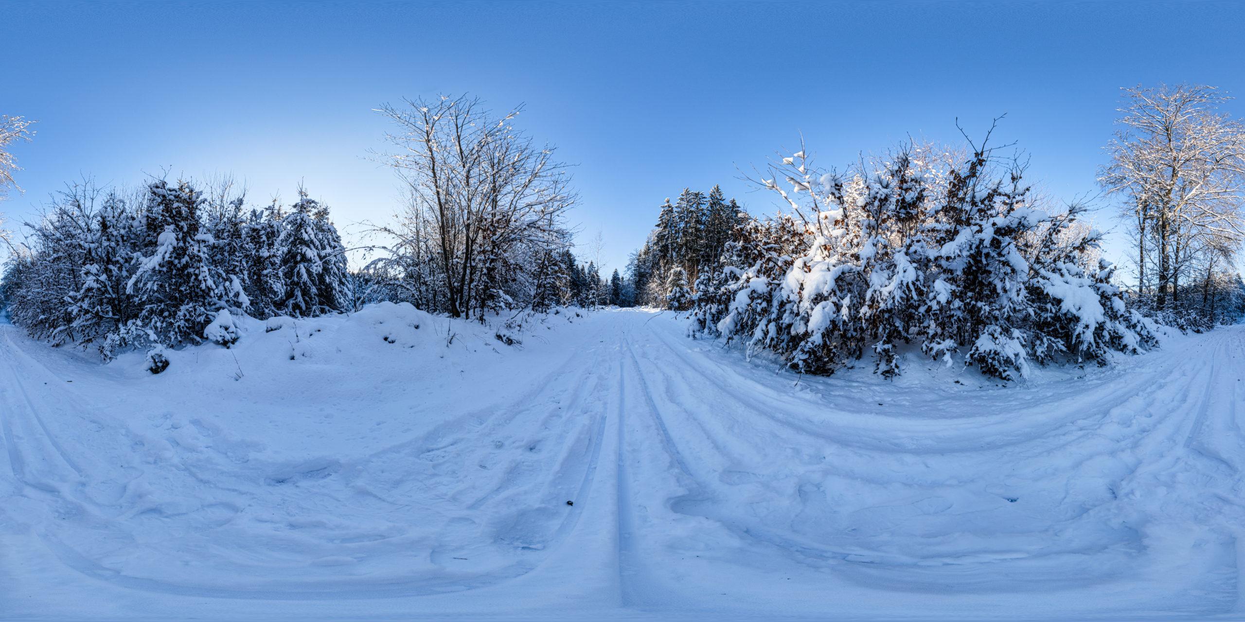 HDRI-Skies-Snowy-Path-Uhlberg