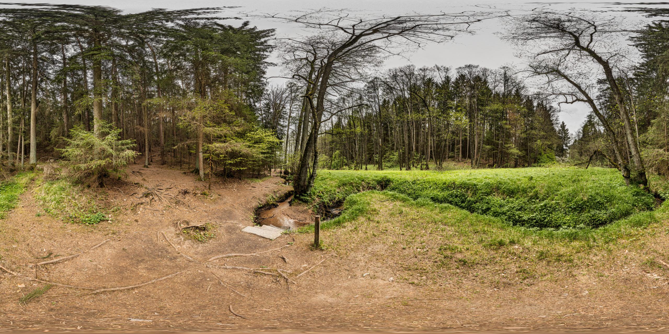 HDRI-Skies-Barefoot-Trail-Brook-Brombachsee