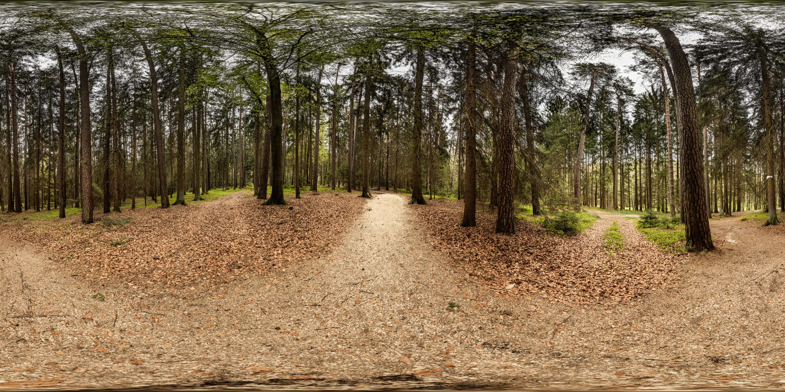 HDRI-Skies-Barefoot-Trail-Crossing-Brombachsee