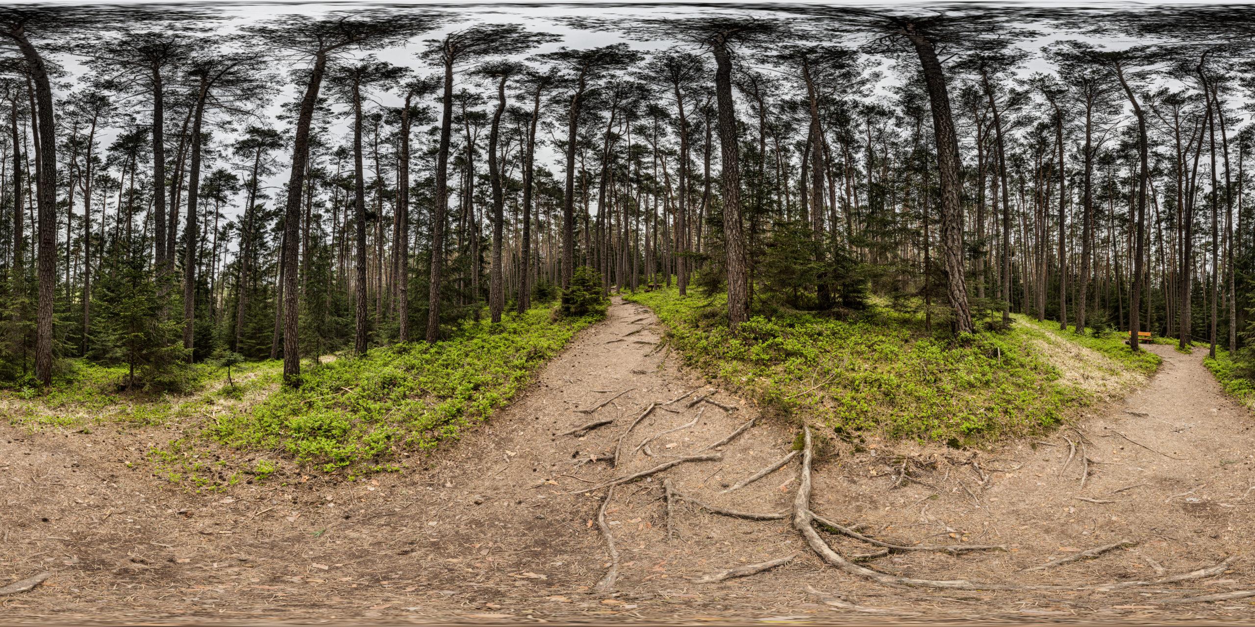 HDRI-Skies-Barefoot-Trail-Path-Brombachsee